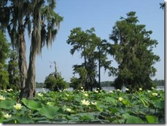 Moss-Point-Mississippi-Real-Estate-10